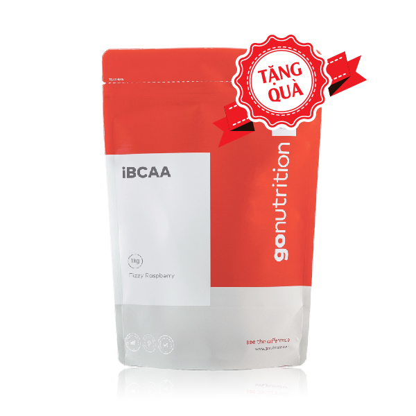 iBcaa GoNutrition 1kg (200 serving)