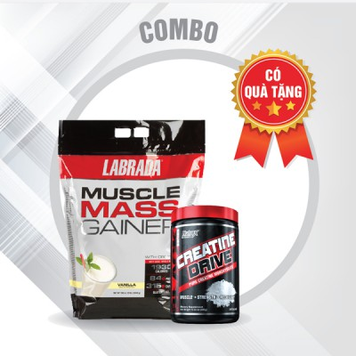 Muscle Mass Gainer 12lbs + Creatine drive 300g